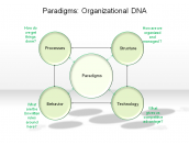 Paradigms: Organizational DNA