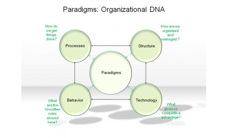 Paradigms: Organizational DNA
