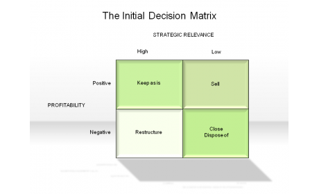 The Initial Decision Matrix