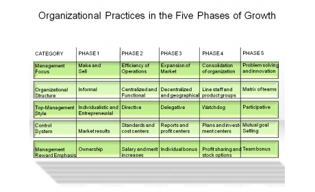 Organizational Practices in the Five Phases of Growth