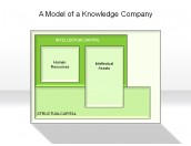 A Model of a Knowledge Company