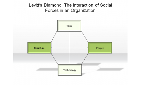 Levitt's Diamond: The Interaction of Social Forces in an Organization