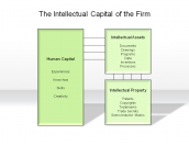 The Intellectual Capital of the Firm