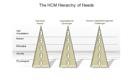 The HCM Hierarchy of Needs
