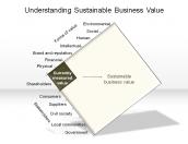 Understanding Sustainable Business Value