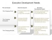 Executive Development Needs
