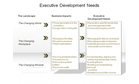 Executive Development Needs