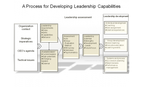 A Process for Developing Leadership Capabilities