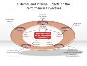 External and Internal Effects on the Performance Objectives