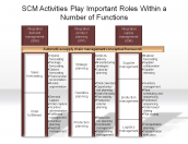SCM Activities Play Important Roles Within a Number of Functions