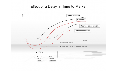 Effect of a Delay in Time to Market