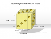 Technological Risk-Return Space