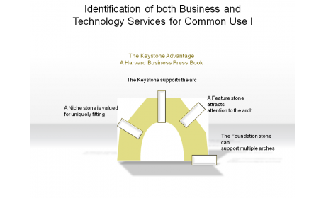 Identification of both Business and Technology Services for Common Use I