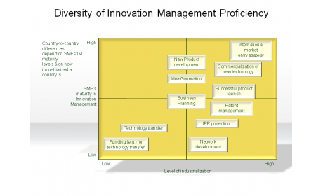 Diversity of Innovation Management Proficiency