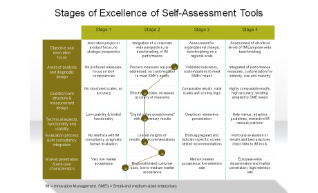 Stages of Excellence of Self-Assessment Tools