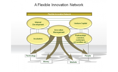 A Flexible Innovation Network