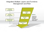 Integrated Multiple Layers and Functions: Management and R&D
