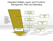 Integrated Multiple Layers and Functions: Management, R&D and Marketing