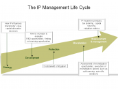 The IP Management Life Cycle