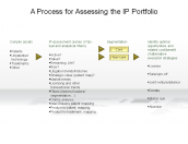 A Process for Assessing the IP Portfolio