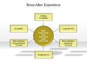 Booz-Allen Experience