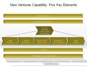 New Ventures Capability: Five Key Elements