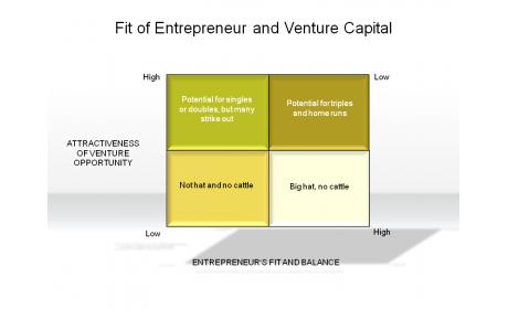Fit of Entrepreneur and Venture Capital