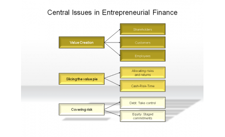 Central Issues in Entrepreneurial Finance