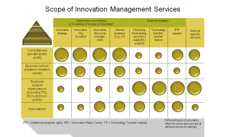 Scope of Innovation Management Services