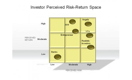Investor Perceived Risk-Return Space