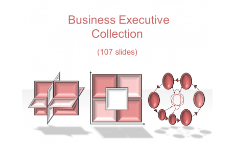 Business Executive Collection